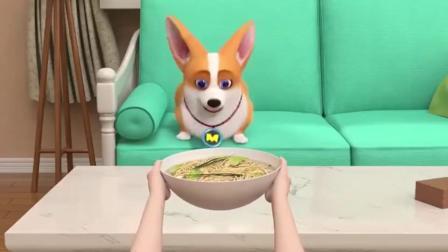 短腿小柯基给飞狗吃面条,自己吃炸鸡汉堡这铲屎官是真的狗啊