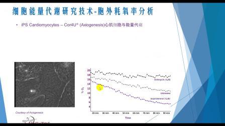 "MINI TALKS:速GET""一键式""细胞能量代谢检测分析解决方案"