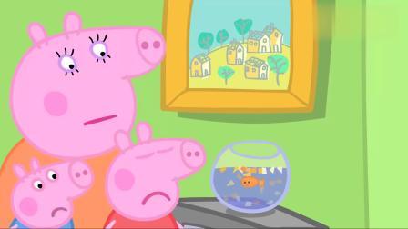 小猪佩奇金鱼金金不爱吃饭了,佩奇好担心,带她去看兽医