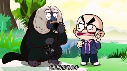 唐唐的烦恼生活:这动物比二哈还沙雕!活着就是为了搞笑的!