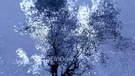 歌曲配乐 f774 2K高清画质晶莹剔透雪花下雪雪树雪景歌舞表演晚会节目舞台走秀节日LED背景视频 背景视频
