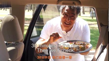 Safekids--厨师车中烘焙披萨