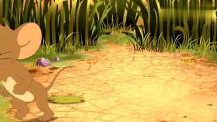 猫和老鼠:为了伪装自己,杰瑞竟然吃了草,这也太狠了吧!