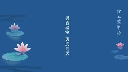 淨土聖賢錄 第1集 - 異香滿室 與虎同居 東晉 慧永法師