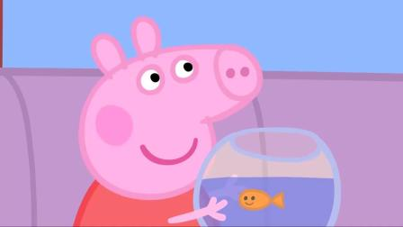 小猪佩奇金鱼宝宝开始疯狂进食,原来是听到佩奇美妙的歌声