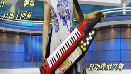 鸽子-肩背合成器电子琴SHS500雅马哈加自动伴奏器