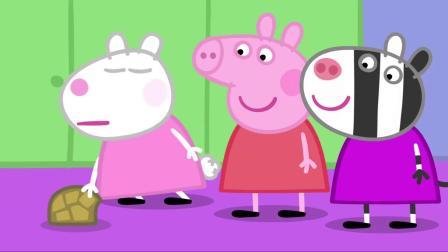 小猪佩奇:仓鼠兽医带着乌龟来学校啦,孩子们好喜欢,都来看了