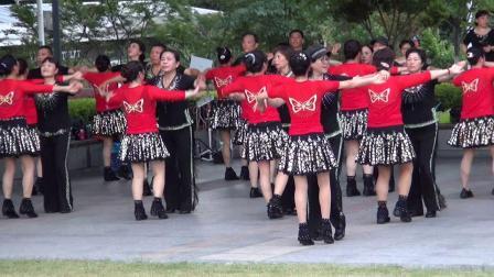 水兵舞《四套  青山一别》