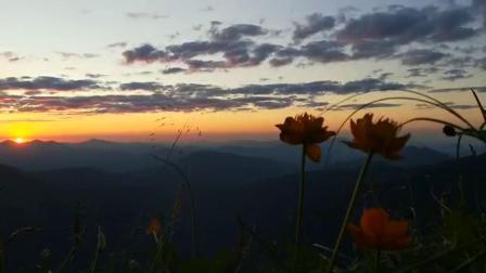 冥想引导音乐Aum(OM)频率.减压放松.疗愈身心.恢复和谐.最纯洁的爱.心灵美.人与世界变美