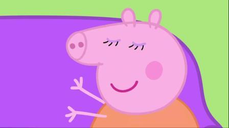 小猪佩奇:猪爸爸真迷糊,弄丢了自己的眼镜,还得出动全家去找!