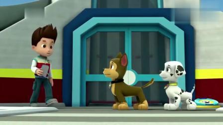 汪汪队立大功:小狗去找莱德,想让他们帮忙,在暴雪前摘完苹果