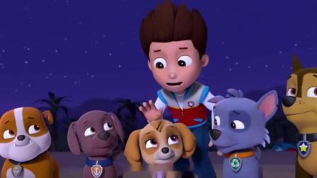 搞笑的汪汪队:人鱼狗的传说成真天天和路马见到了人鱼狗,太神奇了