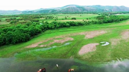 黄河水绕着准格尔流-廖虹-