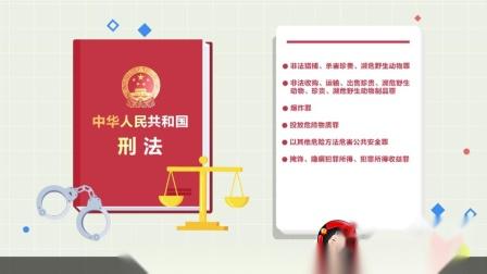 长江流域禁止捕捞规定MG动画公益宣传片制作公司闪狼动漫案例展示