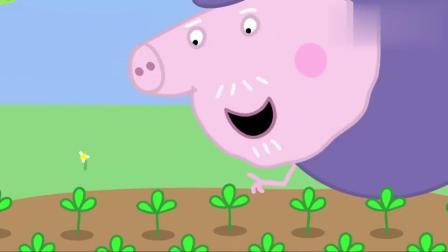 小猪佩奇:猪爷爷的花园里藏了非常多彩蛋,佩奇和朋友们要找到它