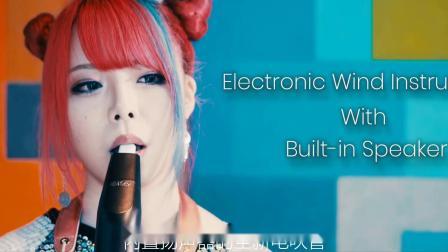 【新浦电声】AKAI-EWI SOLO 中国音色电吹管-国内首发宣传片