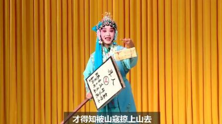 扬剧《失子惊疯》字幕版-仪征市扬剧团-赵悦、薛萍表演