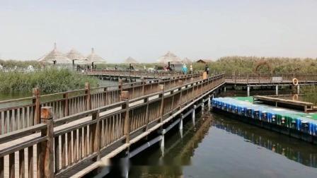游银川石嘴山沙湖景区