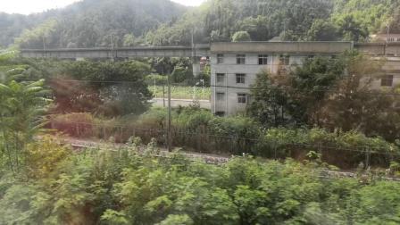 火车经过株洲石峰区1