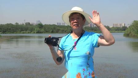金秋开心快乐总群徒步青龙湖2020.9.7.AAA
