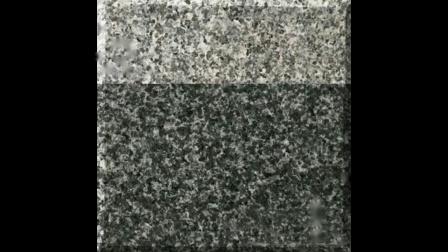 芝麻黑光面 芝麻黑花岗岩厂家 - 中俊石材