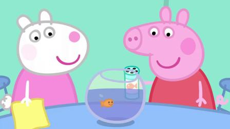 小猪佩奇:艾德蒙的宠物真酷,是一只壁虎,还聪明的很!