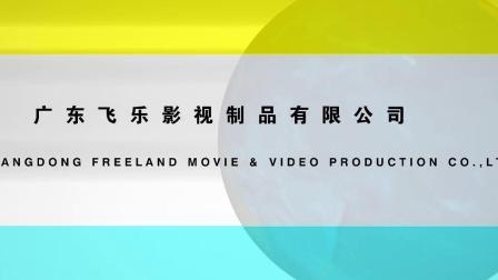 广东飞乐影视制品有限公司 (4)