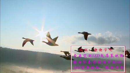 美丽中国梦 (合唱版)背景视频预览