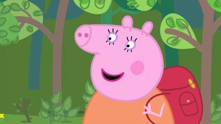 小猪佩奇:佩奇拿着望远镜,到处看呀看,她看到了什么