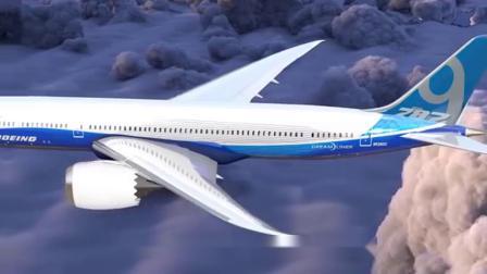 飞机在飞行中,万一和鸟相撞后果有多严重?看完令人捏了一把冷汗