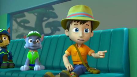 汪汪队立大功:猴子按下视频按钮,接通莱德,太聪明了