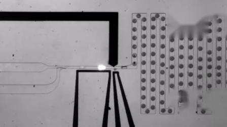 微流控微液滴内的动态快速注射_高性能多通道压力泵