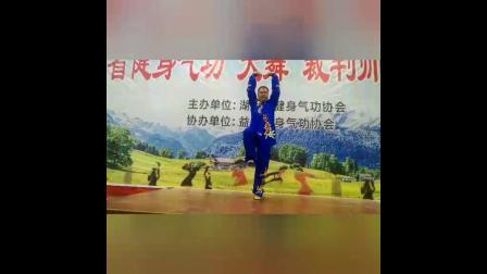湖南省大舞裁判培训--汪磊老师带练--原材料反映