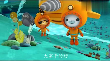 海底小纵队:大家要带索尔去冰上看看,真是太棒了,索尔好开心啊!