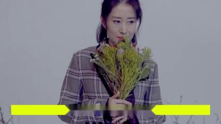 扯下恩爱遮羞布?刘敏涛与前夫离婚内幕曝光:竟因一支抹茶冰激凌
