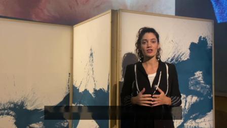 【从天而降 —— ALCANTARA书法之旅】策展人Dagmar Carnevale Lavezzoli谈展览