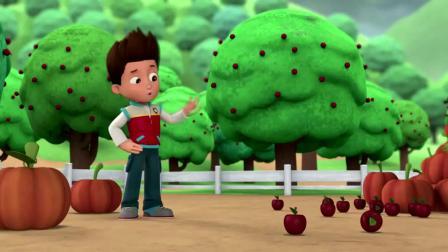 汪汪队:毛毛就想吃个苹果,却被南瓜砸中脑袋,没苹果吃了