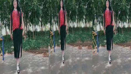 zhanghongaaa自编简单广场舞 在以前发送的广场舞的基础上编排而成的大众化舞