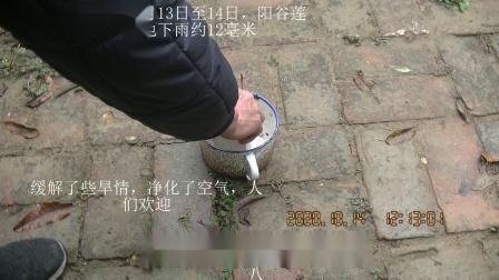 2020年10月13日至14日,阳谷莲花池,下雨约12毫米【2020.10.13、14】