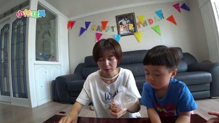 小伶玩具:一起来自制好看又好吃的盆栽蛋糕吧! 第3集