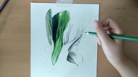 【彩铅与火锅相遇记】彩铅画火锅系列第二弹:绿色系蔬菜更新