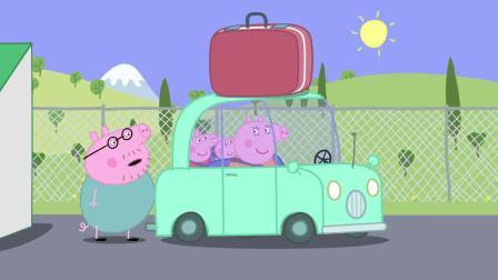 小猪佩奇:泰迪太可怜了,被佩奇忘在了飞机上,没人要了!