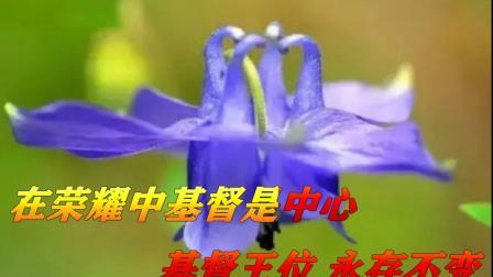 新编赞美诗337首 无我惟主歌 哈尔滨市平房基督教会 雄鹰弟兄制作 献诗