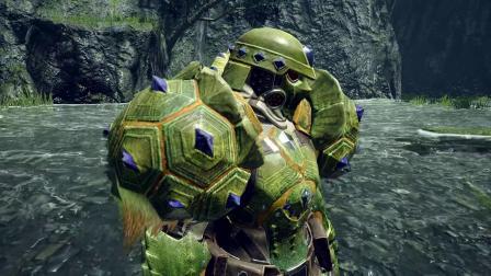 《怪物猎人:崛起》河童蛙素材装备介绍