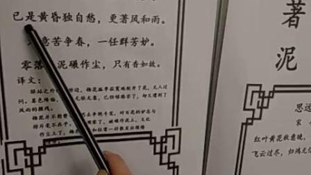 读幼儿园大班古诗(宋词《陆游(卜算子咏梅》)并识字