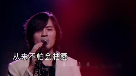 吴佑城-带刺玫瑰(原版)红日蓝月KTV推介