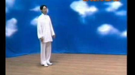形意十二形拳—邸国勇 演示讲解