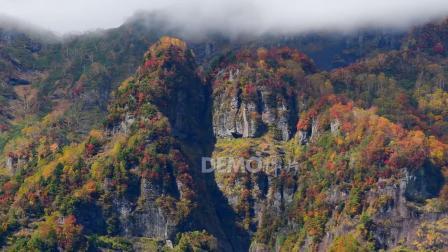 歌曲配乐 a853 2k画质唯美清新高山森林树木植物小草蓝天白云云海流云云雾缥缈大好河山诗歌朗诵大自然景色空镜头视频 大屏素材