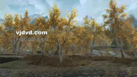 唯美秋天落叶溪流场景视频素材下载,2560X1440高清视频素材小品背景,大树,秋叶,秋天,落叶,歌曲背景,情景剧,舞台剧,树林,大自然,小河,溪流,背景视频