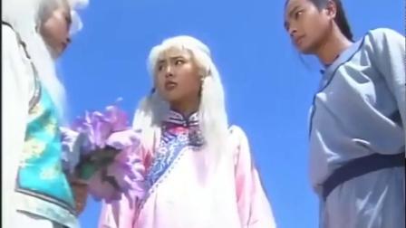 塞外奇侠:大结局杨云骢和哈玛雅联手除掉楚昭南,从此浪迹江湖